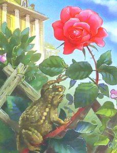 Картинка к книге О жабе и розе Всеволод Гаршин